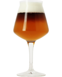 Beer glasses - Teku Birra Del Borgo glass - 25 cl