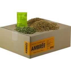 Kits de recettes 4L - Recette Beer Kit bière ambrée