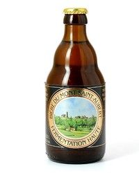 Flaschen Bier - Mont Saint-Aubert