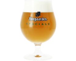 Beer glasses - Hoegaarden Spéciale - 25 cl Glass