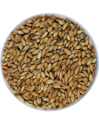 Malts - Malt Weyermann CaraMunich type 1 EBC 90