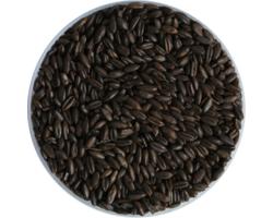 Malts - Weyermann Chocolate Rye Malt 650 EBC