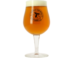 Beer glasses - Glass Tempest - 25 cl