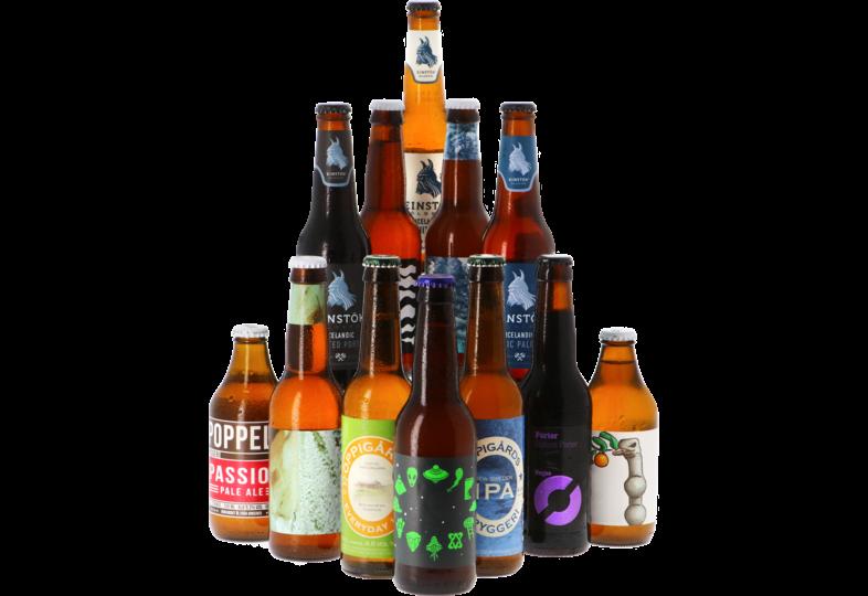 Bier packs - Viking Speciaalbier Pack - 12x33cl