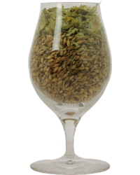 Bicchiere - Bicchiere Barrel-Aged