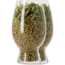 Beer glasses - Pack 2 Glass American Wheat Beer