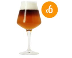 Ölglas - Pack de 6 verres Teku Birra Del Borgo - 25 cl