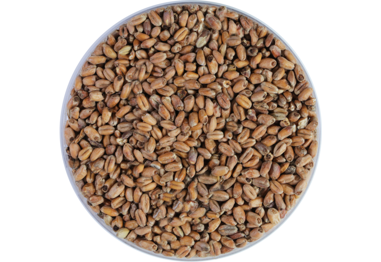 Malts - Weyermann Dark Wheat Malt 15-20 EBC