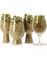Bierglazen - Craft Beer Tasting Kit