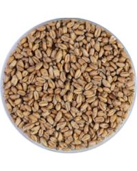 Malts - Malt de Blé/Wheat/Froment blanc 4,5 EBC