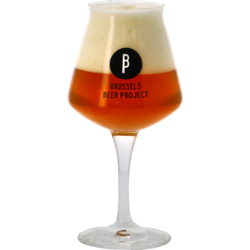 Ölglas - Verre Teku Brussels Beer Project - 33 cl