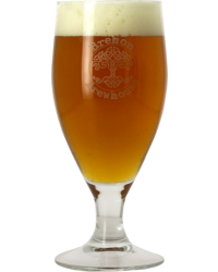 Vasos - Copa Brehon Brewhouse - 25 cl