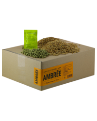 Brassage - Recharge Beer Kit bière ambrée