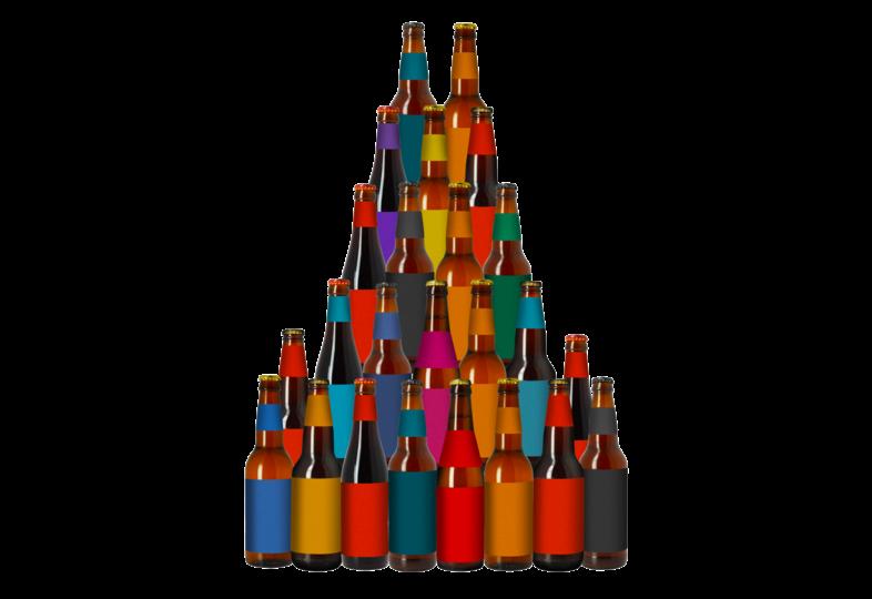 Pack de cervezas artesanales - Colección HOPT - 24 botellas