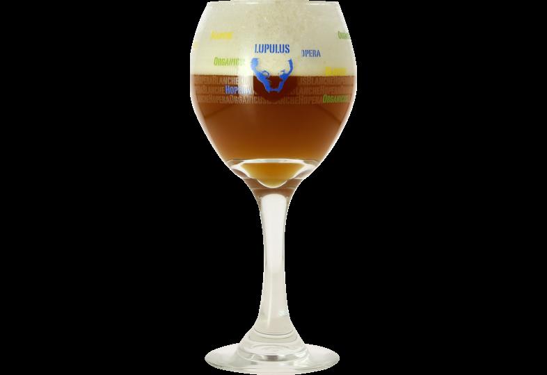 Verres à bière - Verre Lupulus - 25 cl