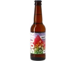 Bottled beer - Big Drop Sour