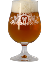 Bierglazen - Glas The White Hag - 25 cl
