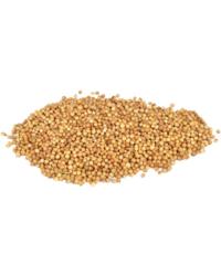 Brouwingrediënten - Koriandervrucht - 30 g