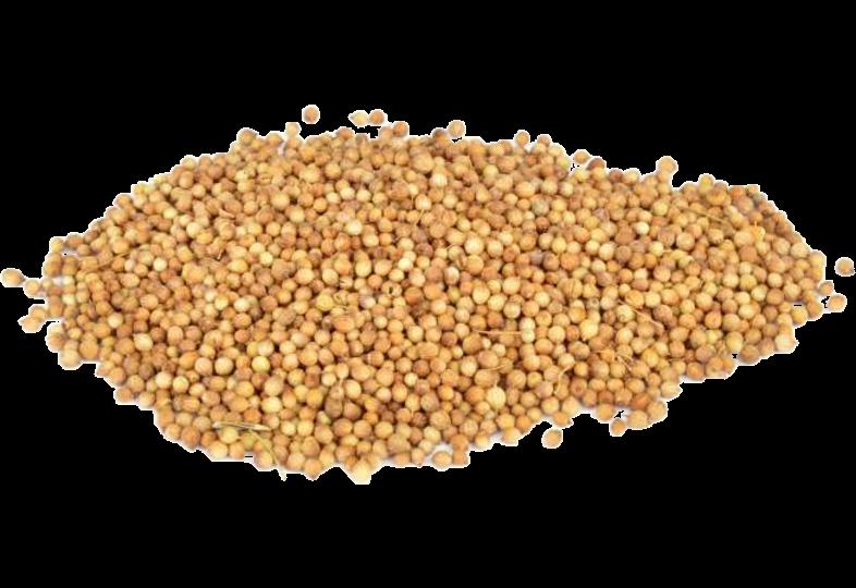 Additifs de brassage - Graines de coriandre - 30 g