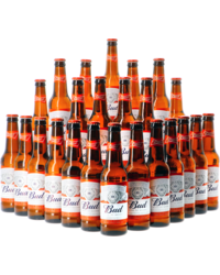 Accessori e regali - Assortiment Budweiser x24