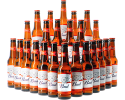 GIFTS - Budwesier Bud x 24 Pack