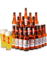 GIFTS - Assortiment Budweiser 18 bières et 2 verres