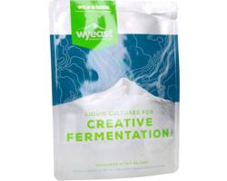 Levures pour fermentation - Levure bière WYEAST 5335 Lactobacillus