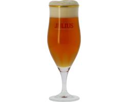 Beer glasses - Verre Hoegaarden Julius 33cl