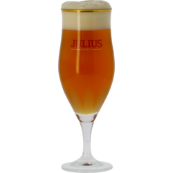 Biergläser - Verre Hoegaarden Julius 33cl