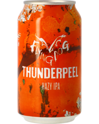 Bottled beer - Flying Dog Thunderpeel - Can