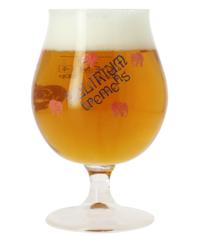 Biergläser - Delirium Tremens 33 cl Glas