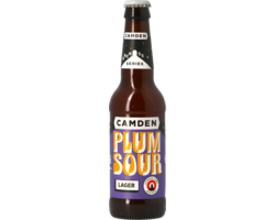 Bottled beer - Camden Plum Sour