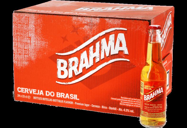 Bottled beer - Big Pack Brahma - 24 bières