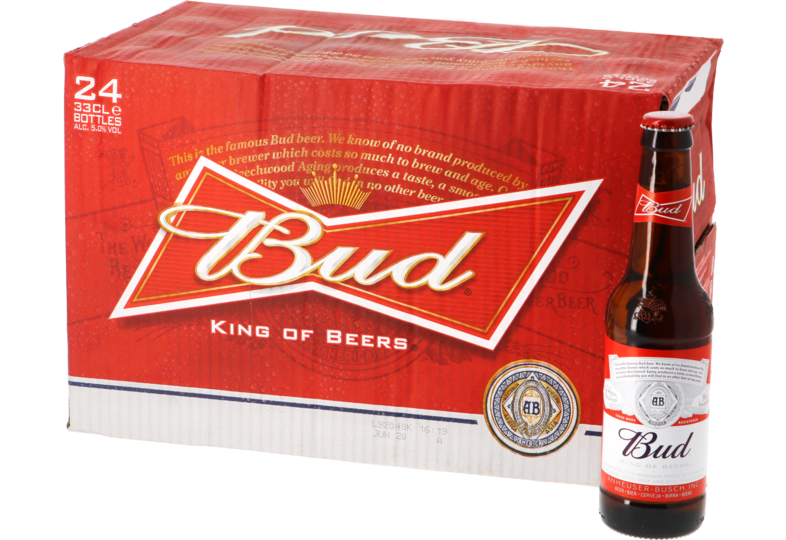 Botellas - Big Pack Bud - 24 bières