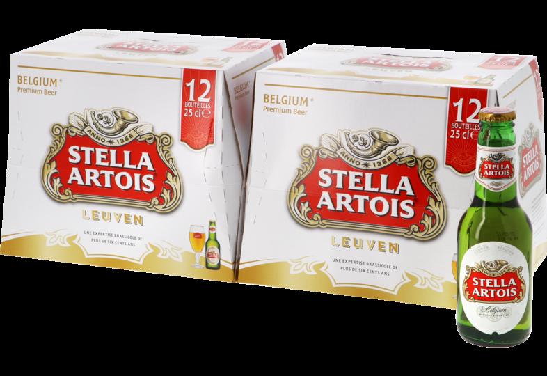 Bouteilles - Big Pack Stella Artois - 24 bières