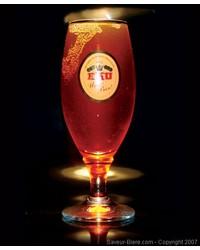 Biergläser - Glas Eku 28 à pied - logo blanc