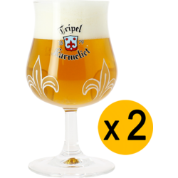 Ölglas - 2 Karmeliet 20cl glasses