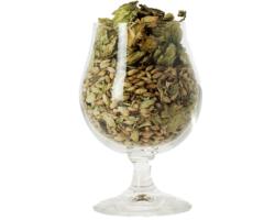 Beer glasses - Brussels plain beer glass