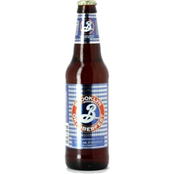 Bottled beer - Brooklyn Oktoberfest