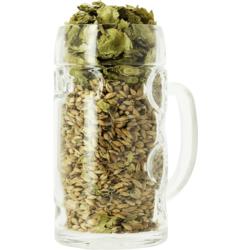 Beer glasses - Isar Bock blank glass - 50 cl