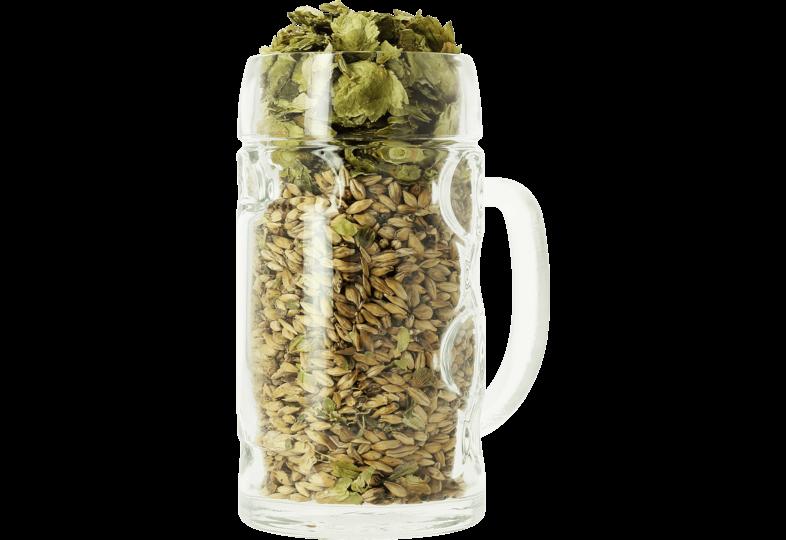 Verres à bière - Verre neutre Isar Bock - 50 cl