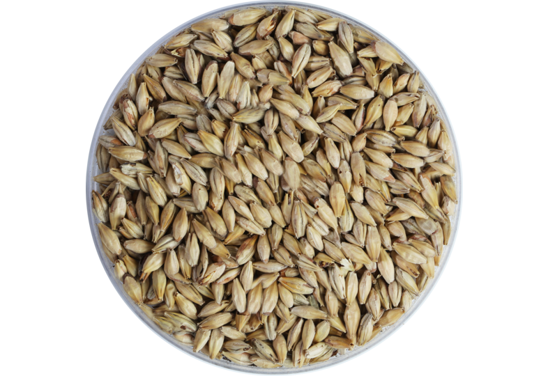 Malts - Crystal Malt 150 EBC