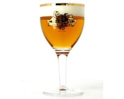 Verres à bière - Verre La Binchoise dorée 25cl