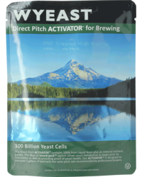 Levures pour fermentation - Levure liquide Wyeast Trappist High Gravity 3787