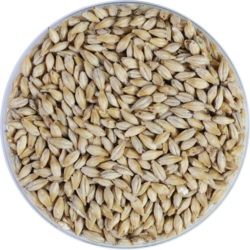 Malts - Cara Clair Malt 8 EBC