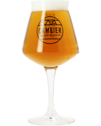 Flaschen Bier - Verre Teku Cambier 33 cL
